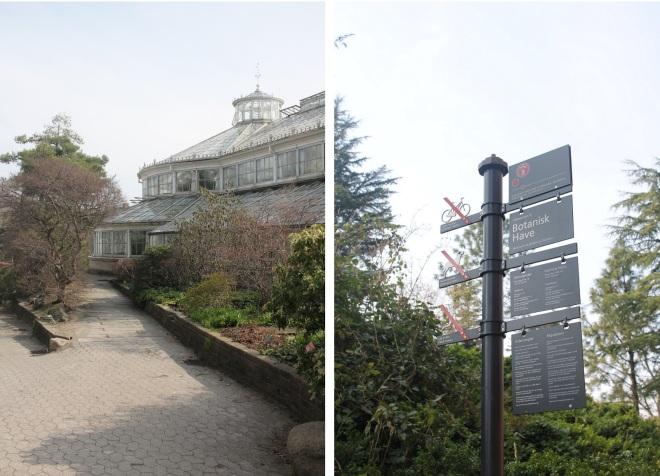 copenhagen+botanical+gardens+%3A+university+of+copenhagen.jpg